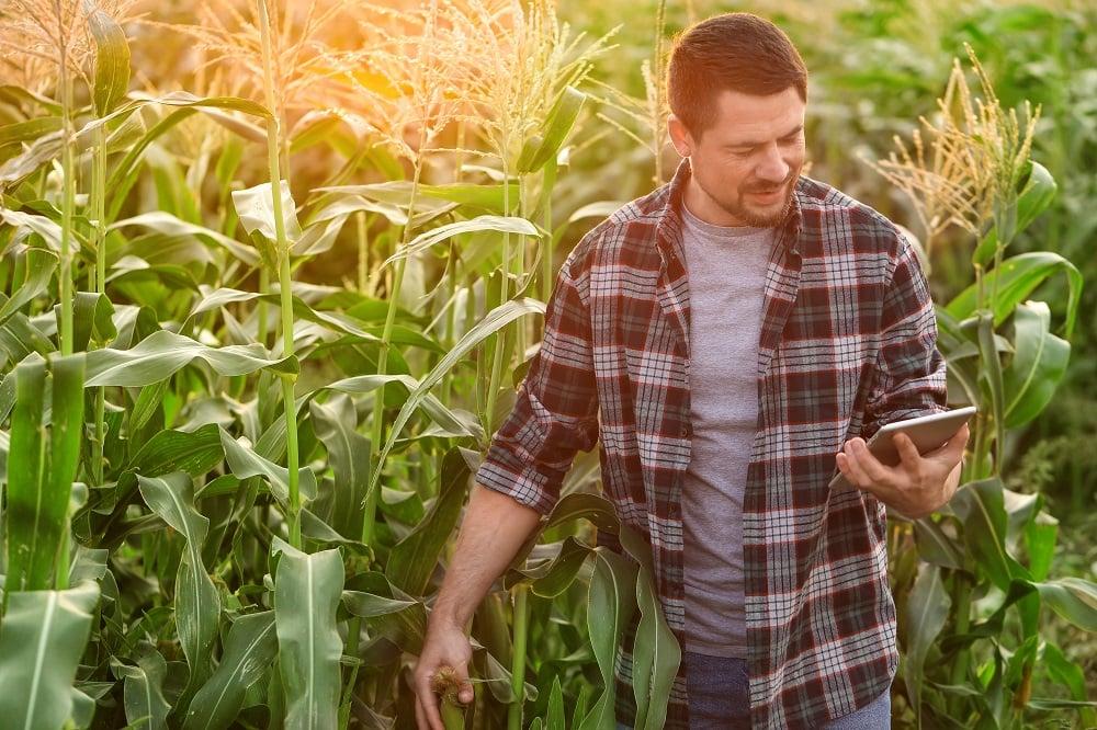 As tecnologias digitais já fazem parte da rotina do agricultor no dia a dia do campo