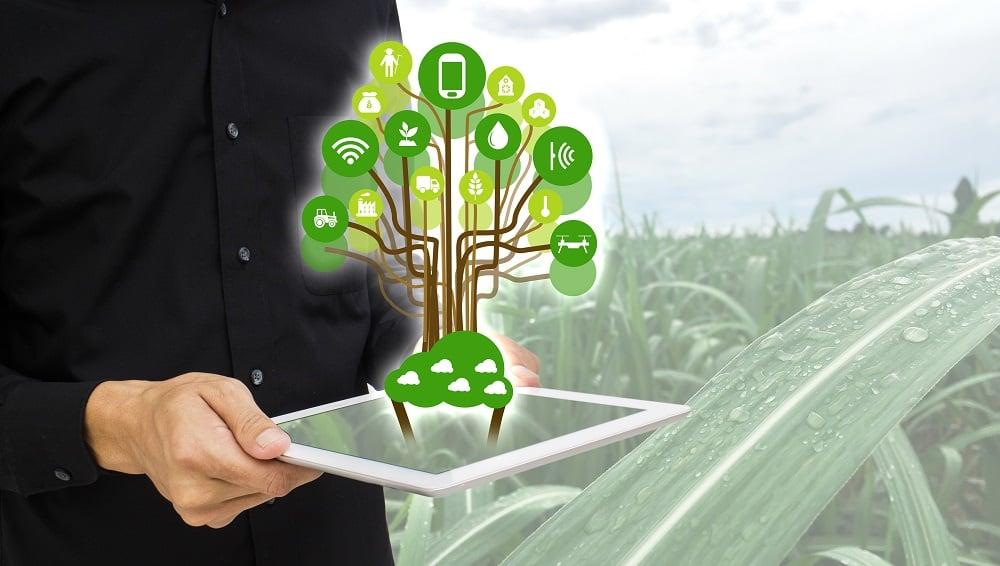 Blockchain - agricultura digital