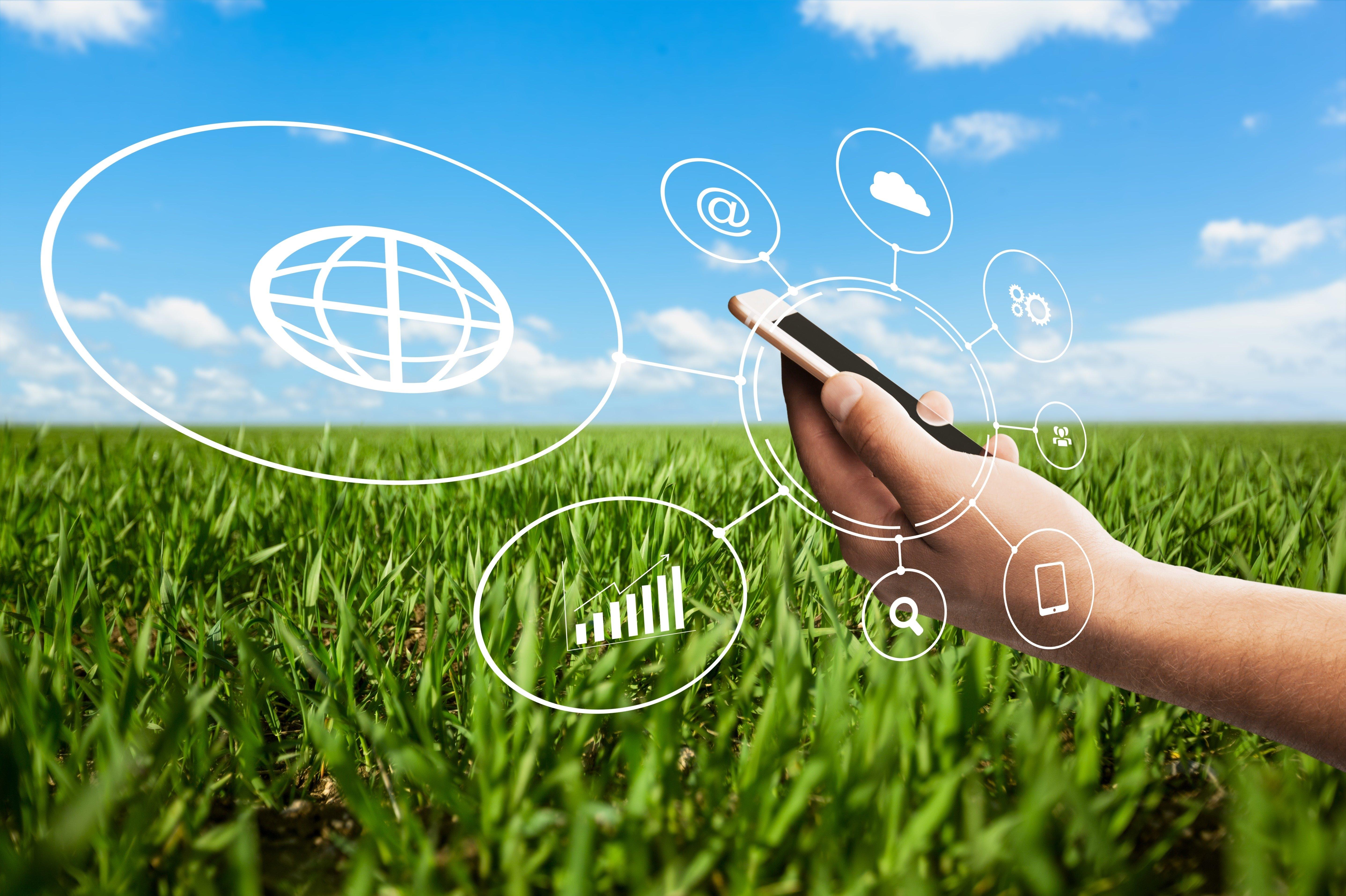 Cresce no país o mercado de softwares destinados ao gerenciamento da atividade agrícola