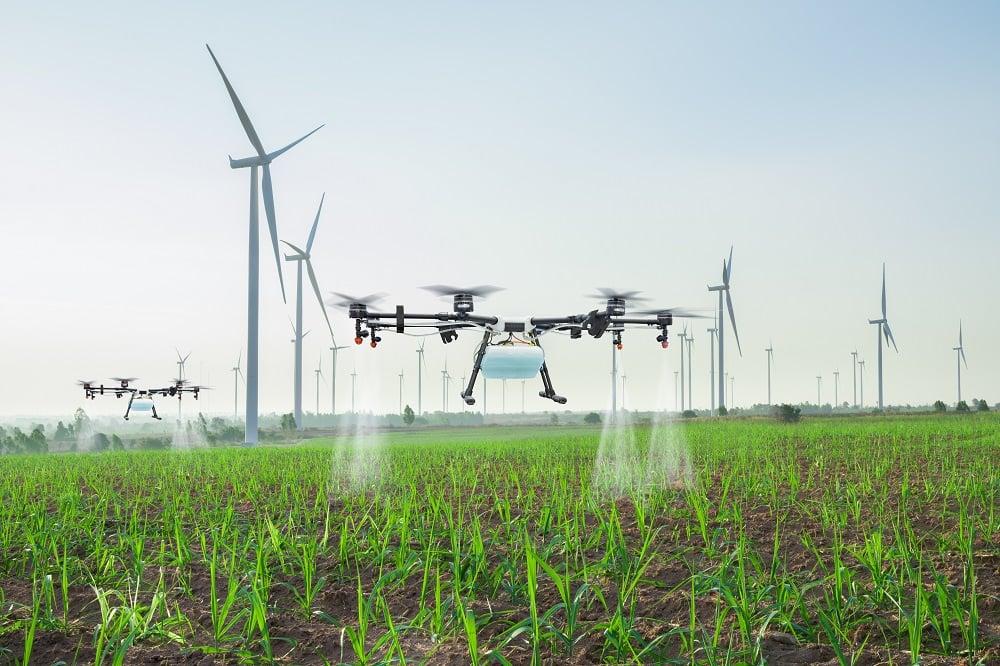 Drone cana-de-açúcar