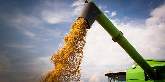 O Brasil é o 3o maior produtor e o 2o maior exportador agrícola do mundo