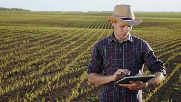 Produtor milho - CAPA - REDUZ