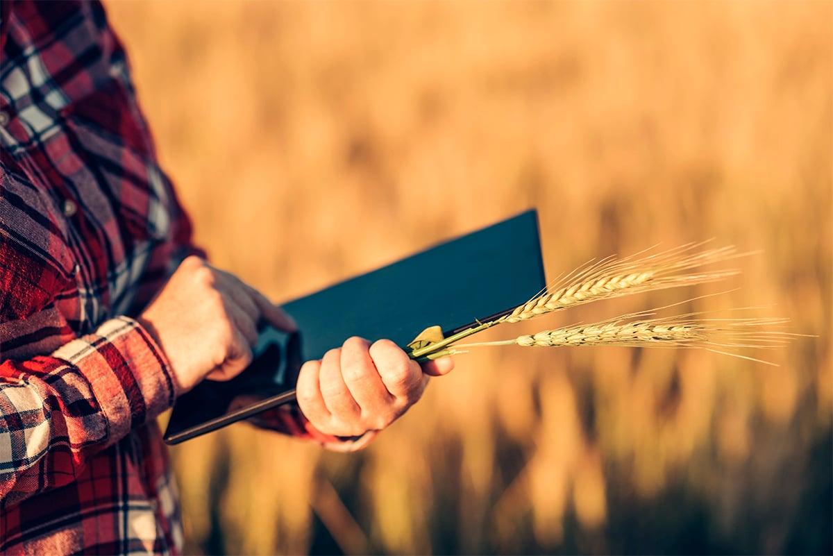 Agricultura digital 4.0 e agricultura de precisão