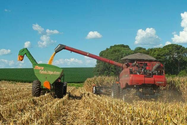 colheita-milho-(case).