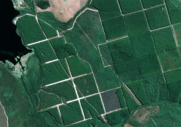 como são geradas as imagens de satélites- fonte embrapa