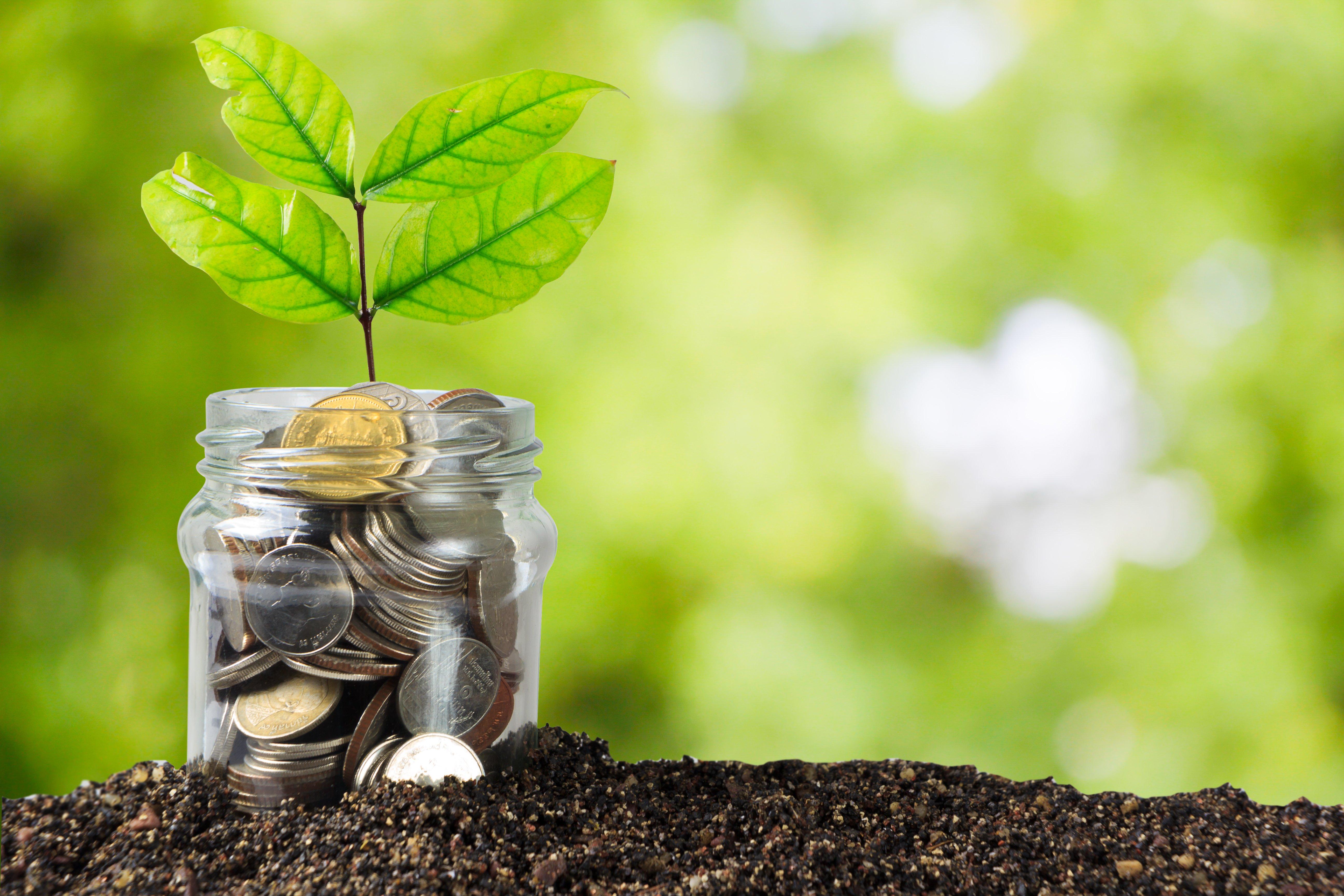 controle financeiro planejamento agrícola