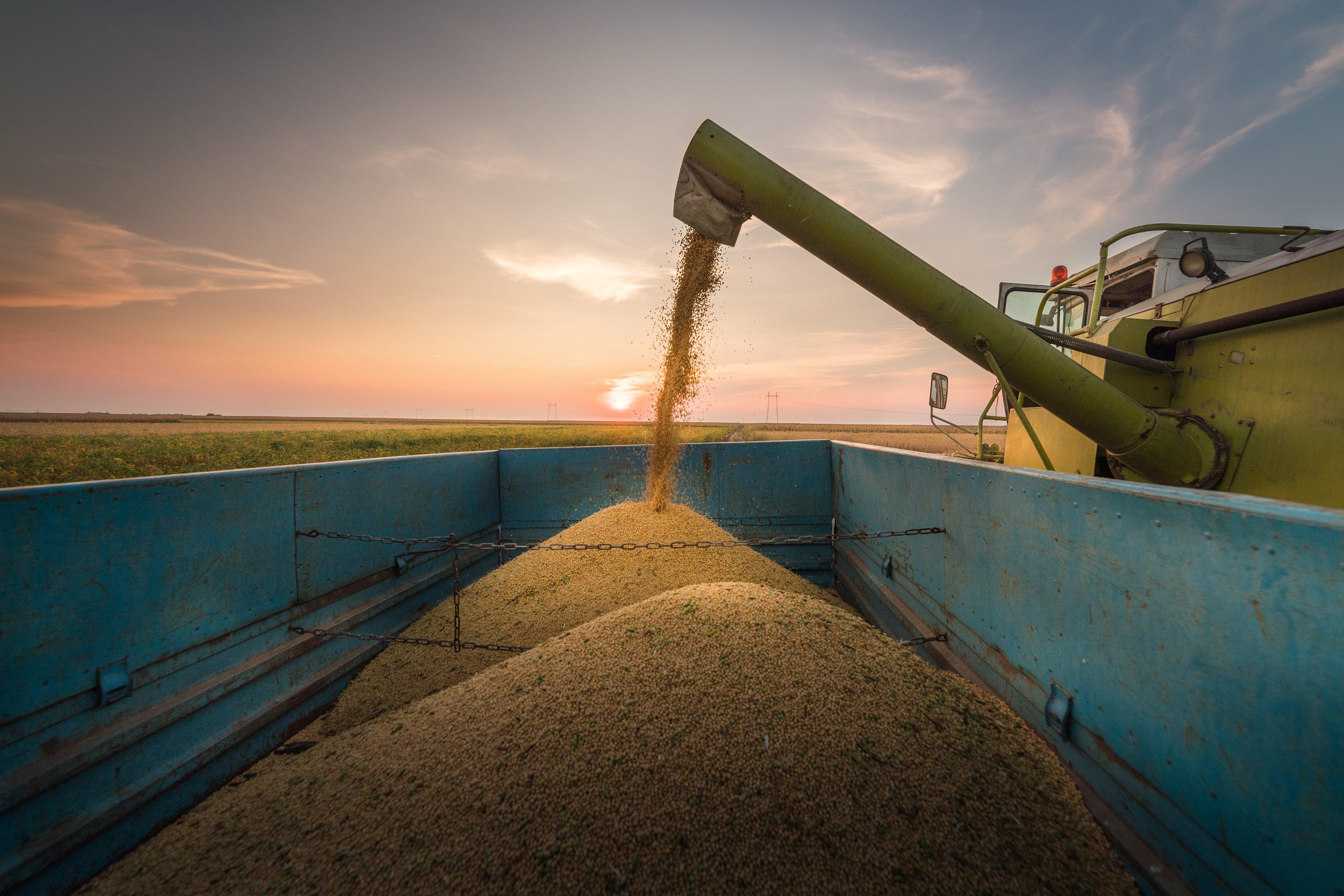 O grande desafio do setor agrícola é ampliar a produção de alimentos, mas com sustentabilidade