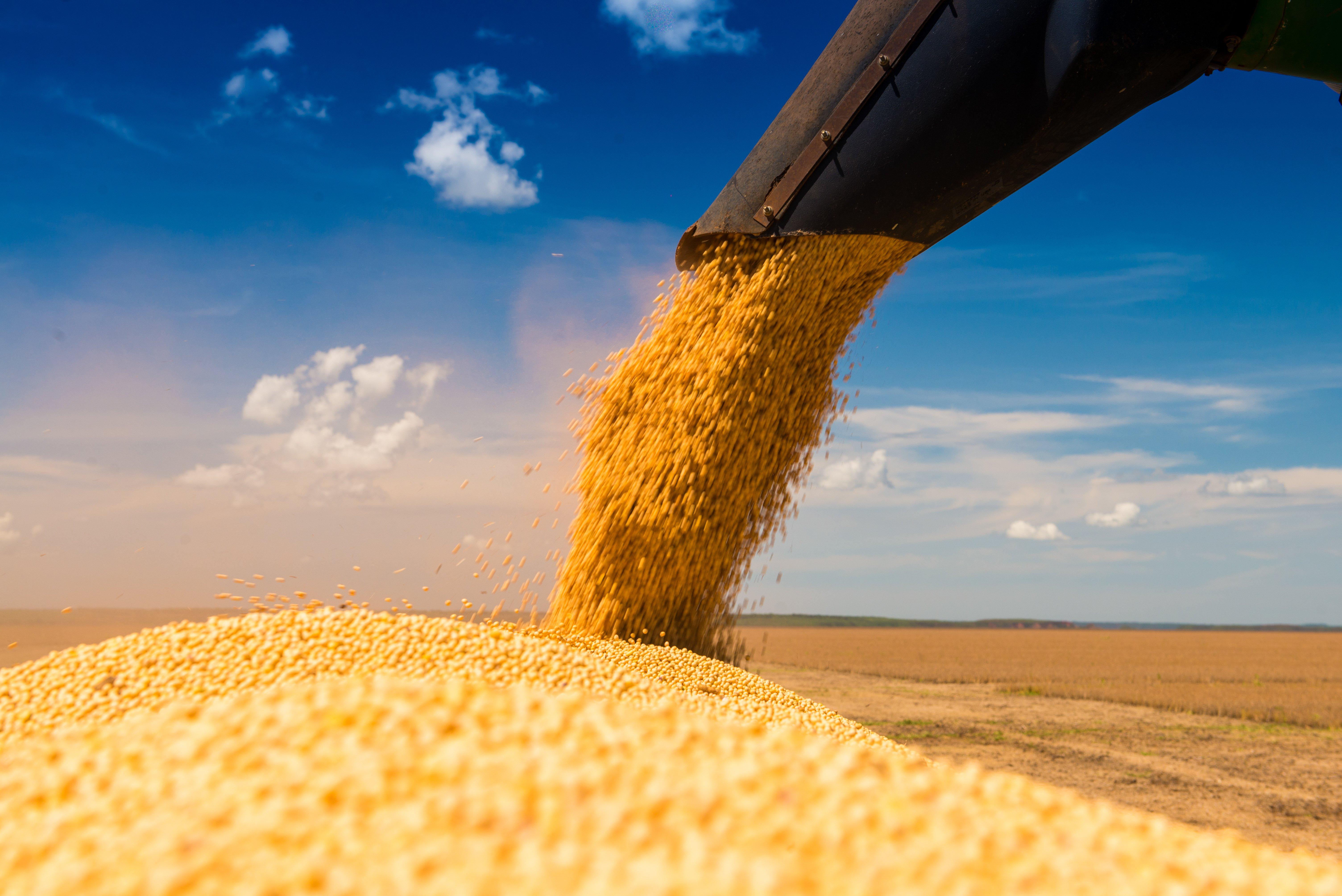 produtividade de soja