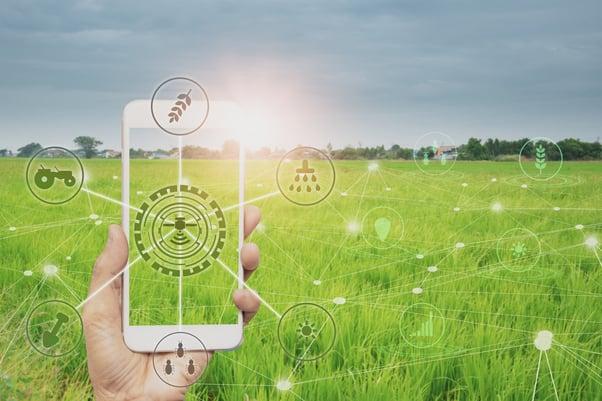 mão de pessoa em um campo segurando celular com desenhos de sol, insetos, plantas e tratores ligados a um desenho de satélite