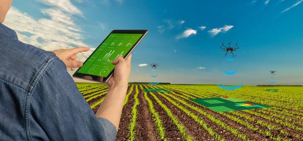 sensoriamento-na-agricultura-de-precisão-tabet na lavoura